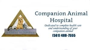 companion-vet2